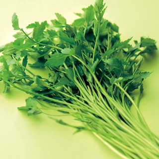 Seri (Japanese Parsley)